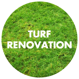 Turf Renovation Update [07/06/2017]